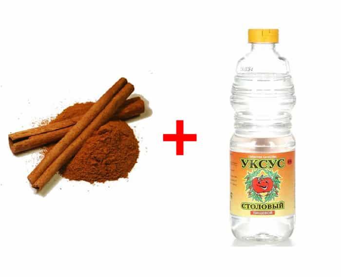 Паста из молотой корицы и уксуса - как устранить запах в холодильнике