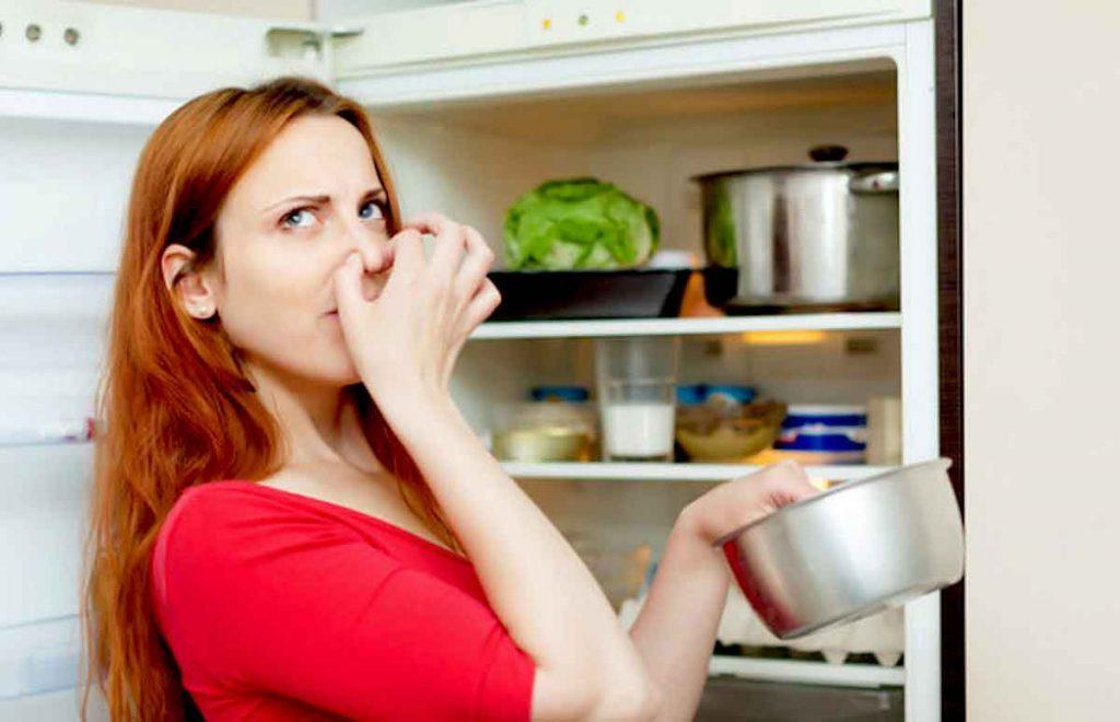холодильник не no frost не морозит
